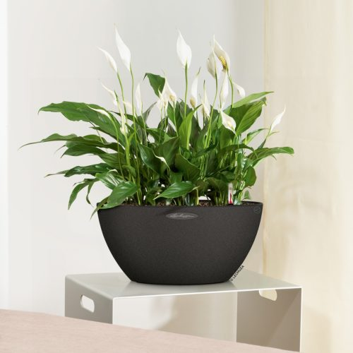 table planters